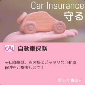 守る Car Insurance CAL自動車保険